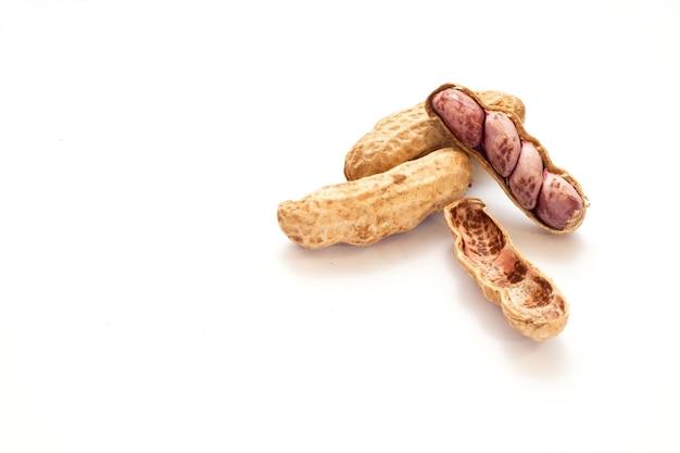 Erdnüsse isolieren auf weißem hintergrund Kostenlose Fotos