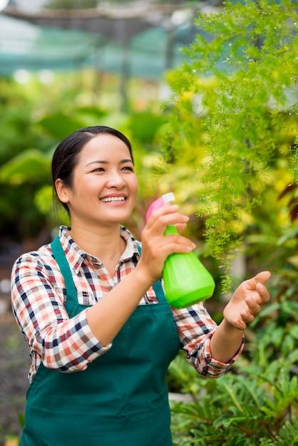 Erfrischende pflanzen Premium Fotos