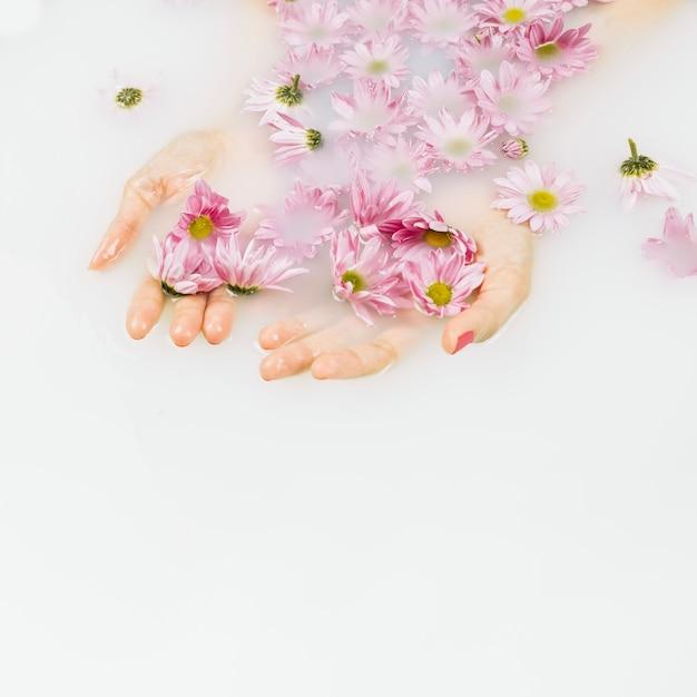 Erhöhte ansicht der nassen hand einer frau mit rosa blumen im badewasser Kostenlose Fotos