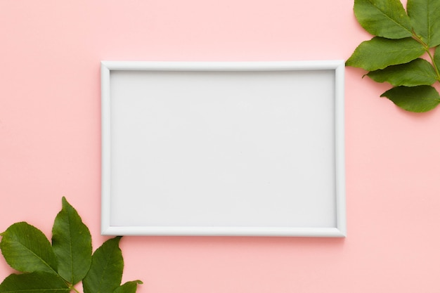 Erhöhte ansicht des weißen bilderrahmens und der grünblätter auf rosa hintergrund Premium Fotos