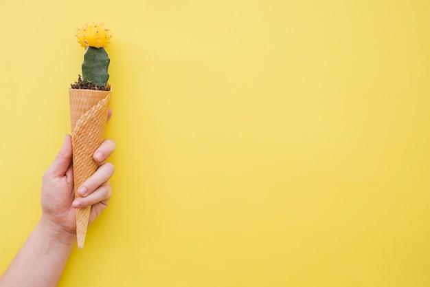 Ernten sie den handholdingkegel mit kaktus Kostenlose Fotos