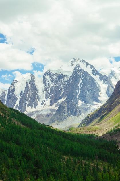 Erstaunlicher sehr großer gletscher hinter nadelbaumwald. Premium Fotos