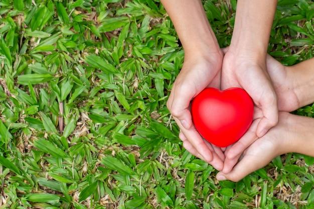 Erwachsene und kinderhände, die rotes herz auf dem gras halten Premium Fotos