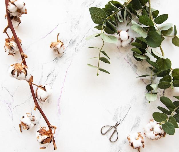 Eukaliptus-blätter und baumwollblumen Premium Fotos