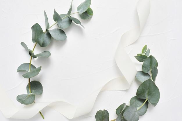 Eukalyptusblätter und farbbandfeld auf weiß. kranz aus blattzweigen Premium Fotos