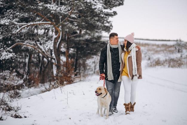 Familie, die in winterpark mit ihrem hund geht Kostenlose Fotos