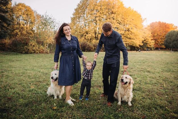 Familie mit einem kind und zwei goldenen apportierhunden in einem herbstpark Premium Fotos