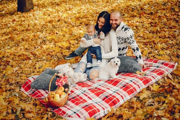 Familie mit sohn in einem herbstpark Kostenlose Fotos