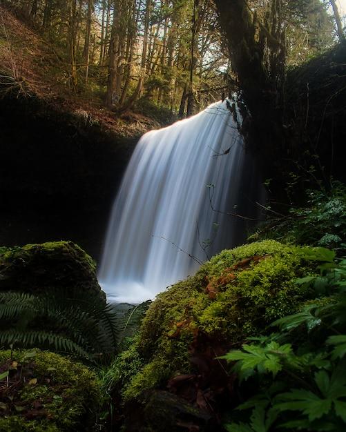Faszinierende aussicht auf einen schönen wasserfall Kostenlose Fotos