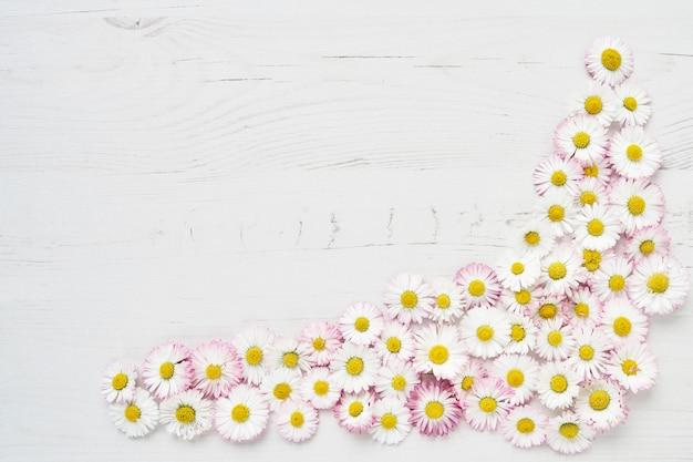 Feiertagshintergrund. gänseblümchen blüht grenze auf weißem holz Premium Fotos