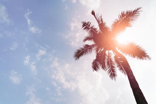 Feiertagsladen mit kokosnussbäumen über klarem himmel am tageslicht Premium Fotos
