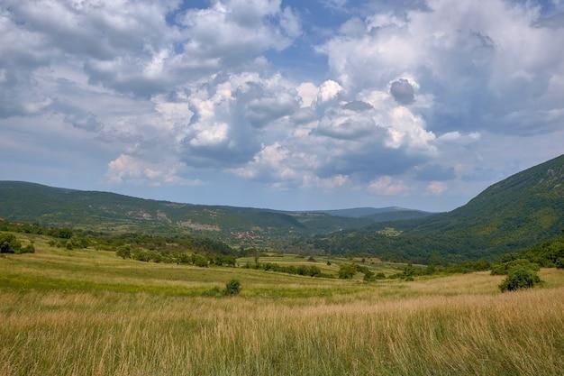 Feld bedeckt mit gras und bäumen, umgeben von hügeln bedeckt mit wäldern unter dem bewölkten himmel Kostenlose Fotos