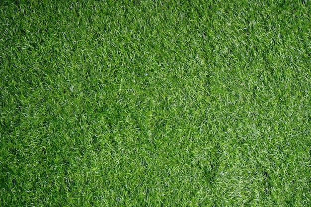 Feld der grünen wiese Premium Fotos