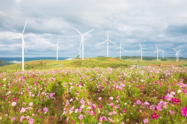 Feld des kosmos blüht mit windkraftanlagen und wolkenhimmelhintergrund. Premium Fotos