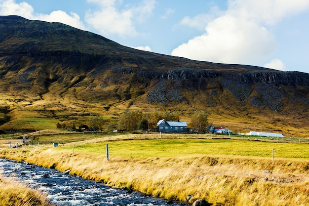 Feld in island Kostenlose Fotos