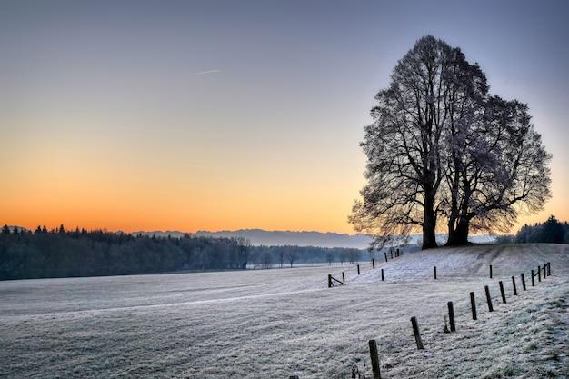 Feld umgeben von hügeln und kahlen bäumen, die während des sonnenuntergangs im winter mit schnee bedeckt sind Kostenlose Fotos