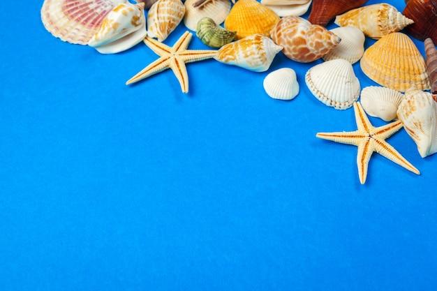 Feld von oberteilen verschiedener arten auf einem blauen hintergrund. Premium Fotos