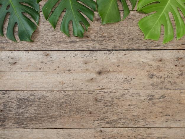 Feld von tropischen blättern monstera auf altem hölzernem hintergrund. platz für text. flach lag, ansicht von oben Premium Fotos