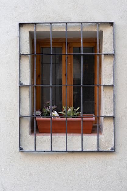 Fenster mit stäben und topf mit pflanzen Premium Fotos