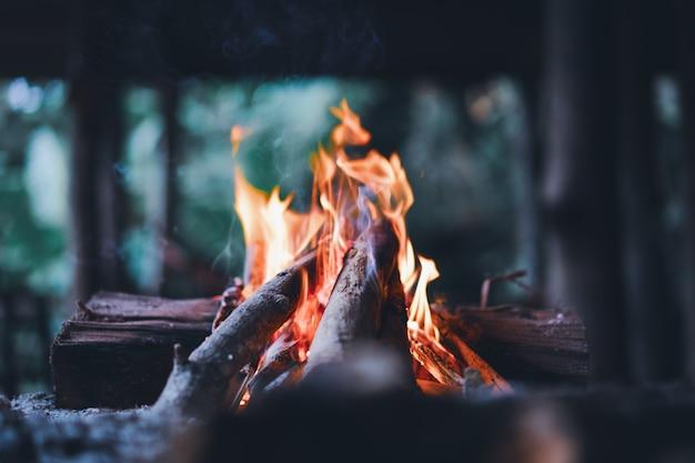 Feuer leuchten mit holzstöcken Premium Fotos