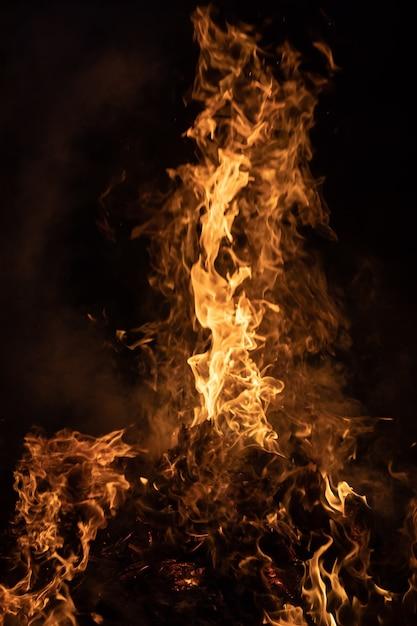 Feuerfeuer in der nacht. feuerflammen auf einem schwarzen hintergrund Premium Fotos