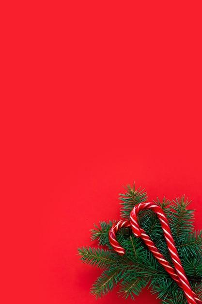 Fichtenzweige und bonbons auf rotem grund. flache lage, draufsicht, kopierraum, diagonale. weihnachtskonzept, feiertagspostkarte. modernes, trendiges design Premium Fotos