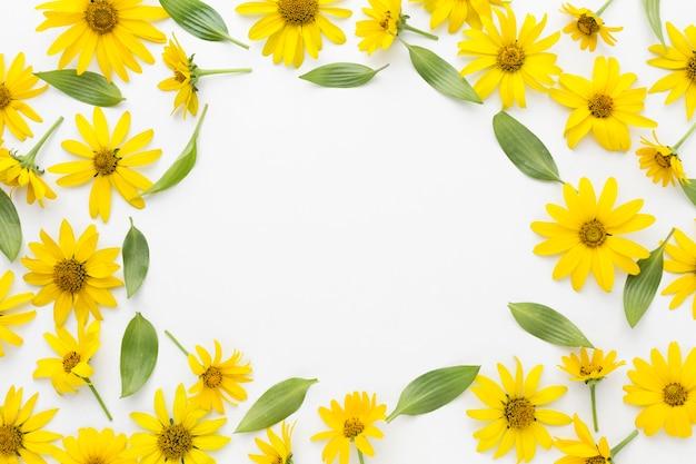 Flach gelber gänseblümchenrahmen Premium Fotos