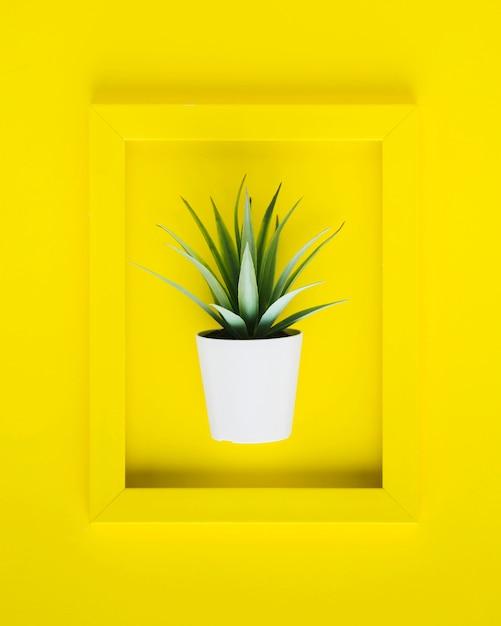 Flach lag gelber rahmen mit pflanze im inneren Kostenlose Fotos