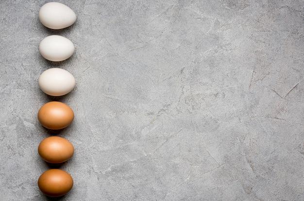 Flach legen hühnereier rahmen Kostenlose Fotos