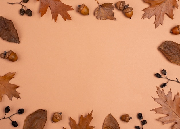 Flache lage der monochromatischen auswahl des blattrahmens Kostenlose Fotos