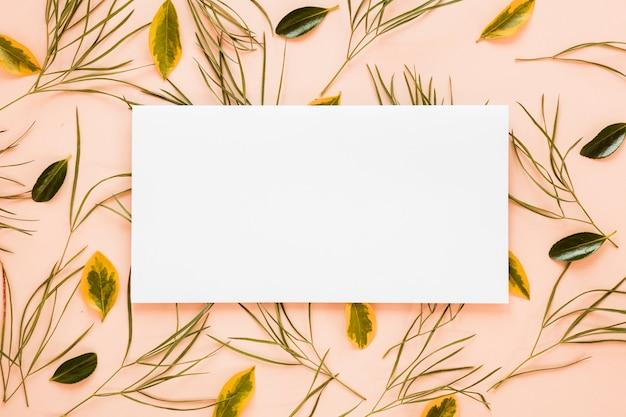 Flache lage der papierkartenschablone mit blättern Kostenlose Fotos