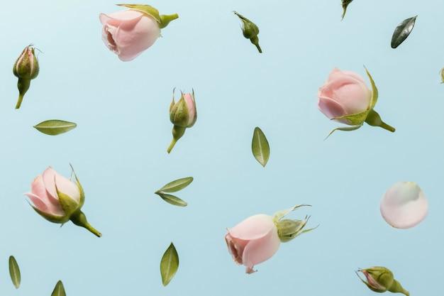 Flache lage der rosa frühlingsrosen Kostenlose Fotos