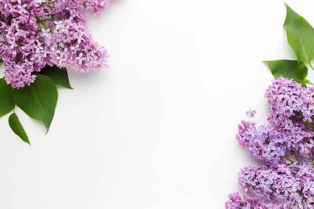 Flache lage des schönen lila rahmenkonzepts Kostenlose Fotos
