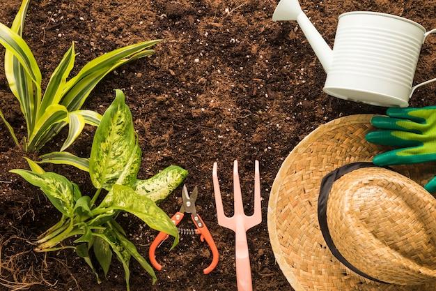 Flache lage von grünpflanzen und gartengeräten Kostenlose Fotos