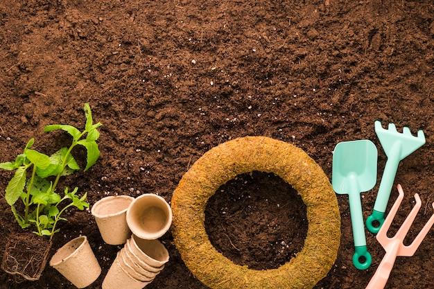 Flache lage von pflanzen- und gartengeräten mit copyspace Kostenlose Fotos