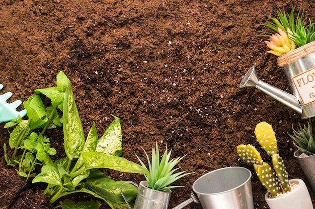 Flache lage von pflanzen und gartengeräten mit copyspace Kostenlose Fotos