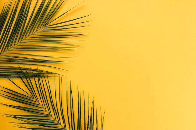 Flache lage von tropischen blättern mit copyspace Kostenlose Fotos