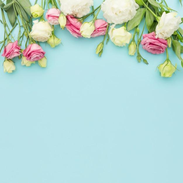 Flache rosa und weiße mini-rosen mit kopierraum Premium Fotos