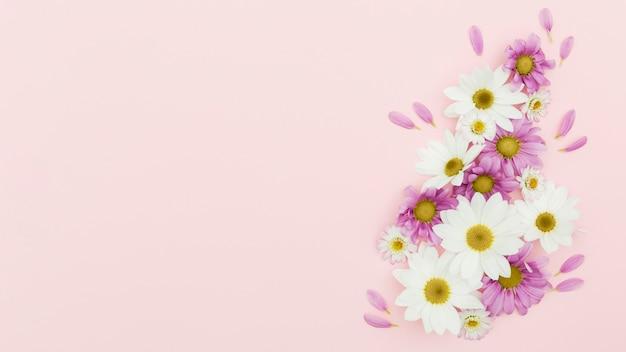Flacher blumenrahmen auf rosa hintergrund legen Kostenlose Fotos