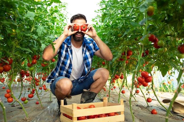 Fleißiger bauer, der dumme und lustige gesichter mit tomatengemüse im garten macht Kostenlose Fotos