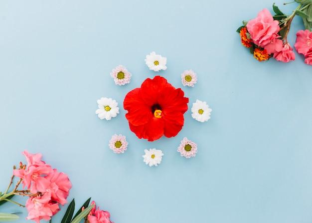 Floral zusammensetzung Kostenlose Fotos
