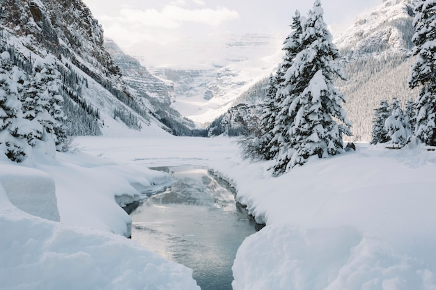 Fluss in den schneebedeckten bergen Kostenlose Fotos