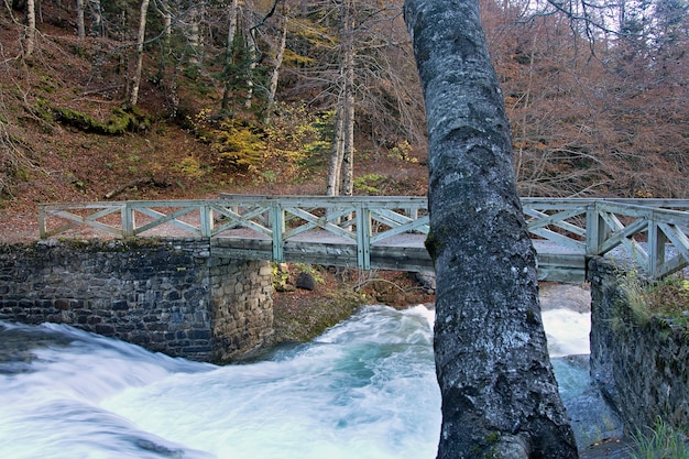Fluss in ordesa nationalpark, pyrenäen, huesca, aragonien, spanien Kostenlose Fotos