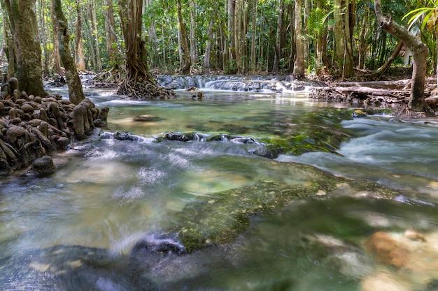 Fluss tief im gebirgswald. natur zusammensetzung Premium Fotos