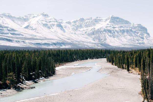 Fluss umgeben von den bäumen unter den schneebedeckten bergen im winter Kostenlose Fotos