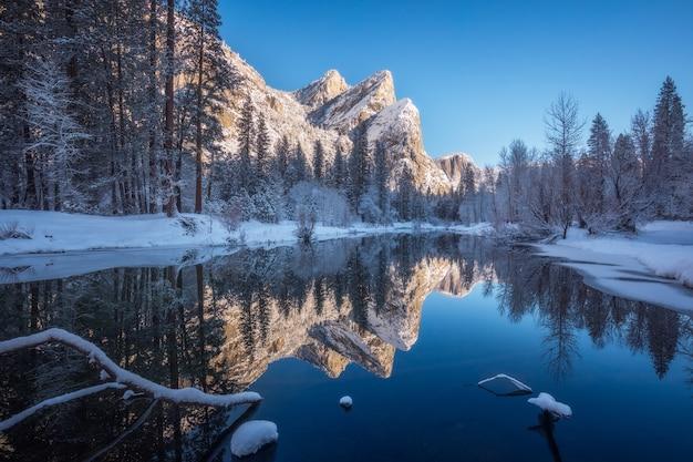 Fluss umgeben von schneebedeckten bäumen im winter Kostenlose Fotos