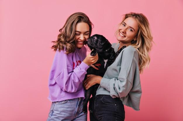 Französische bulldogge leckt lächelndes brünettes mädchen. glückselige blondhaarige dame, die schwarzen welpen auf pastell hält. Kostenlose Fotos