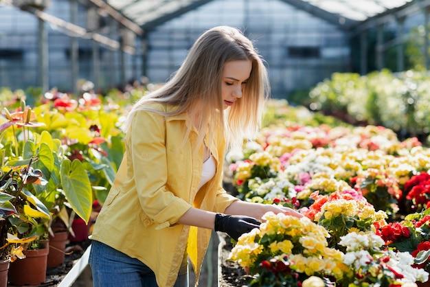 Frau, die schnörkelblumen sich interessiert Kostenlose Fotos