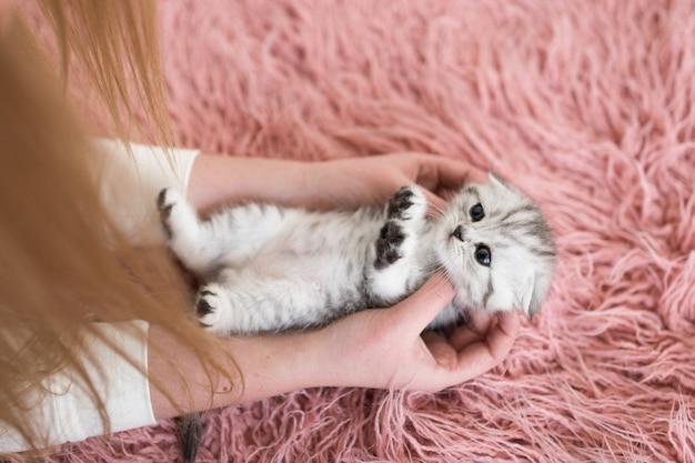 Frau hält lustiges graues kätzchen auf ihren armen Kostenlose Fotos