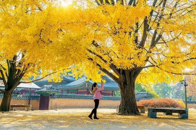 Frau machen ein foto im herbst in gyeongbokgung Kostenlose Fotos